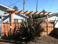 Redwood Arbor and Fence